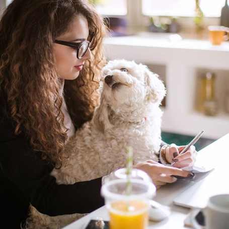 Millenial girl with dog on her phone