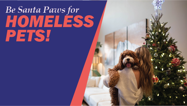 Be Santa Paws For Homeless Pets